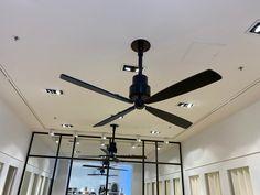 Ceiling Fan, Home Decor, Fan, Decoration Home, Room Decor, Ceiling Fan Pulls, Ceiling Fans, Home Interior Design, Home Decoration
