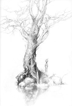 Alan Lee ~ Faeries and wood elves. Alan Lee, Forest Drawing, Nature Drawing, Tolkien, Art Puns, Alchemy Art, Forest Illustration, Principles Of Art, Middle Earth