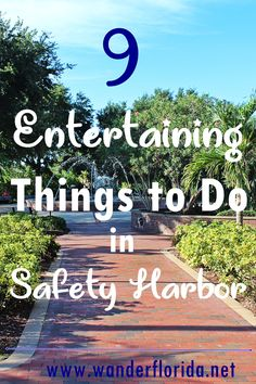 9 Entertaining Things to Do in Safety Harbor, Florida - Wander Florida