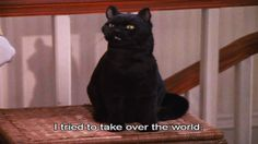 """How Well Do You Remember """"Sabrina, The Teenage Witch"""""""