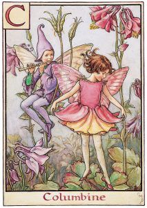 """Vintage print 'Columbine' by Cicely Mary Barker from """"A Flower Fairy Alphabet""""; Poems and Pictures by Cicely Mary Barker, Published by Blackie & Son Limited, London Cicely Mary Barker, Elfen Fantasy, Fantasy Art, Columbine Flor, Elves And Fairies, Dark Fairies, Fairy Pictures, Vintage Fairies, Flower Fairies"""