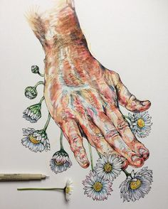 Hand study inspiration by Noel Badges Pugh