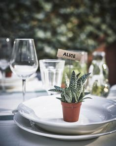 DIY Wedding | A small succulent plant with a name card sits on a place setting.