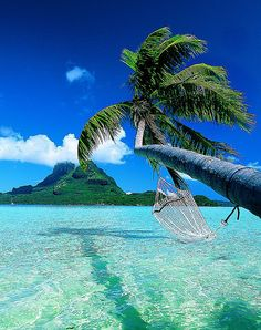 Umm, yes that is a hammock...in paradise!  Bora Bora