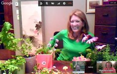 Herbs that will change your life: Nancy Smithers joins Garden Chatter. Link to presentation and useful herb information.