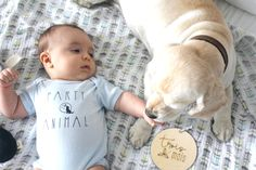 Pastilles jalons pour nouveau-nés - France Mars - Newborn Plywood Milestone Discs