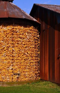Country Living ~ Silo, Harvested Corn - I would call that a corn crib. Country Barns, Country Life, Country Living, Country Roads, Country Charm, Farm Barn, Old Farm, Agriculture, Farming