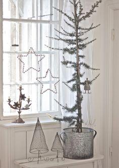 alamodeus: Oh Christmas Tree ...