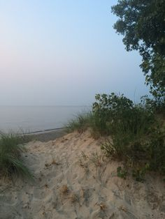 Indiana Dunes National Lakeshore: Camping near the shore of Lake Michigan only an hour away from Chicago. Click to read about our trip.