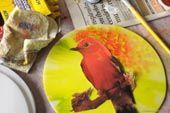 """Conheça curiosidades sobre os passarinhos mais comuns em São Paulo e aprenda a reutilizar materiais para atraí-los ao seu jardim, quintal ou varanda! Oficina voltada a todas as idades. Forneceremos os materiais, mas você também pode trazer: - garrafas PET (diversas cores, formatos e tamanhos) - embalagens de Tetra Pak (não abrir totalmente, apenas lavar)...<br /><a class=""""more-link""""…"""