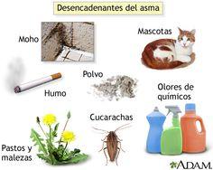 Existen distintos factores que influyen en desencadenar el asma, los ácaros son uno de los desencadenantes de un ataque de asma, lo que hace que se aconseje a los pacientes que padecen la enfermedad que cubran los colchones cojines y demás, con fundas para que hagan de barreras protectoras; no son aconsejables las almohadas rellenas de plumas, tampoco los peluches, con el fin de evitar la acumulación de polvo.