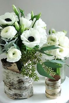 birch with anemones and ranunculus