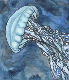 Jellyfish by Tamara Phillips, via Behance