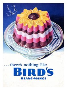 This was one dessert from my childhood I do not miss. Blancmange was something I did not eat. Retro Recipes, Vintage Recipes, Bird's Custard, Vintage Baking, Vintage Food, Vintage Cakes, Vintage Style, Food Icons, Vintage Birds
