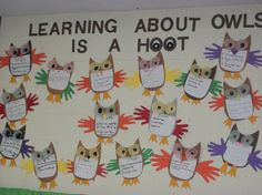Another owl unit fact board!  It was a hoot!