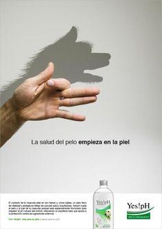 Yes!pH: Cómo crear una #marca desde cero. Gráfica para publicaciones especializadas @TiendAnimal La Tienda Online para Mascotas