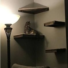 (paid link) Cats are natural born climbers and they adore to be as tall in the works as possible. These wall mounted floating Cat Shelves and hammocks are a perfect idea ...