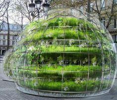 Pop-up greenhouse in Paris by renowned vertical-garden-designer Amaury Gallon.