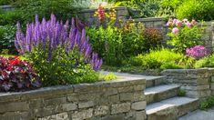 Zahrada ve svahu | Dům a zahrada - bydlení je hra