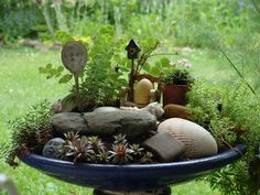 It would be lovely to have fairies in a little fairy garden. Love the additional seashells.