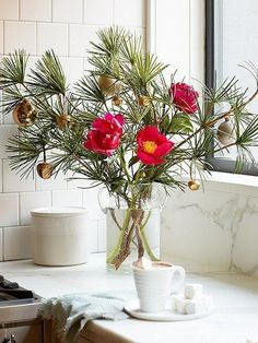 A gorgeous Christmas tree alternative for those who don't have the room -- small rental apartment anyone? -- or simply don't want the upkeep, this tabletop Christmas tree-in-a-vase arrangement is just the thing! Love this style idea with bright red flowers and mini Christmas ornaments. 3 Fresh Takes on DIY Holiday Greenery from our resident Weekend Decorator Megan Pflug! Get the full DIY instructions over on our Style Guide here.: