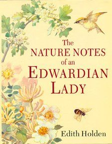 The Nature Notes of an Edwardian Lady book by Edith Holden Edith Holden, Michel De Montaigne, Illustration Noel, Botanical Illustration, Botanical Drawings, Botanical Prints, Vintage Books, Vintage World Maps, Nature Sketch
