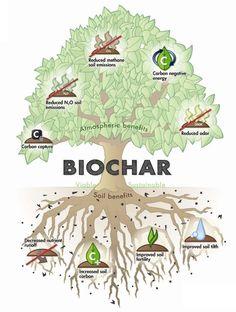 Big Earth Biochar