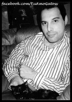 Freddie Mercury had nine cats during his Queen years: Tom, Jerry, Oscar, Tiffany, Delilah, Goliath, Miko, Romeo, and Lily. When on tour he would call home to talk with the cats.