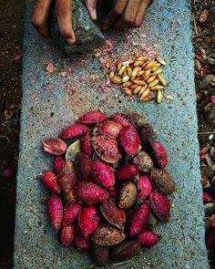 Childhood Memories Quotes, Childhood Games, Kerala Food, Desi Food, Indian Street Food, Fruit And Veg, Fruit Food, Expo, Portraits