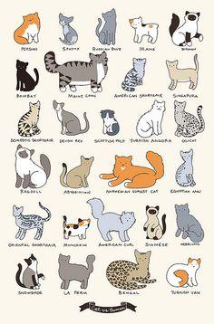 """CAT BREEDS,"" by Yasmine Surovec via Flickr -- From the creator of the wonderful cat cartoon, ""Cat vs Human"" (http://www.catversushuman.com/)"