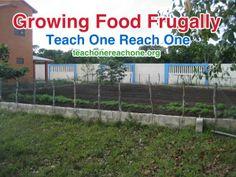 Growing Food Frugally –Teach One Reach One
