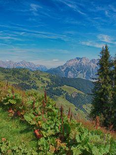 Austrian Alps Доступ к сайту для информации Free Photos, My Photos, Stock Photos, Europe, Mountains, Landscape, Salzburg Austria, Travel, Alps