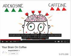 Come agiscono sul cervello le droghe usate a scopo ricreativo |/ This is your brain on drugs