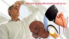 tác dụng của nấm linh chi với sức khỏe người giả