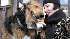 Estudio indica que los perros rechazan a las personas que tratan mal a sus humanos