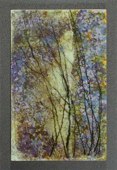 Wistaria Thicket, Opus 476, 2009 (Copyright © 2000-2012 Roger V. Thomas)