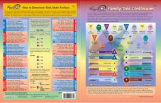 Birth order chart
