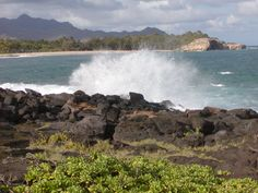 Kauai, our favorite place.  Been there twice, want to go again.