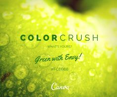 What's your color crush today? We're GREEN with envy #FC6B68