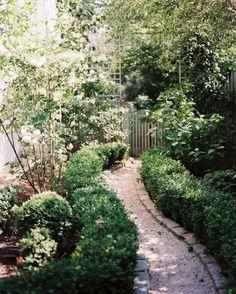 Landscaping Photo - Chemin de gravier bordée de buis