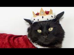 Pet Costume - Royal Crown