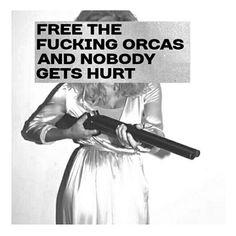 I still might shoot seaworld in the face #whitehaton #firing #givemetheorcas #iwasntasking #imtellingyou #igers #funnyshit #fuckjerry #freetilly #hipster #seaworldcanfuckthemselves #blackfish ✌