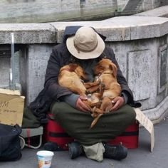 Dogs of homeless people may not get the best food or shelter but they have the one thing every dog really wants--to be with their human 24/7. A lot of fat, emotionally neglected, house/yard dogs would trade places with them in a heartbeat!