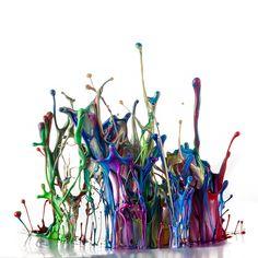 Wild Colors by Markus Reugels, via 500px