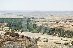Way to the Chebika Oasis between the rocks tunisia africa. Old ruins of Chebika village.