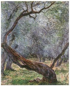 Study of Olive Trees Painting  - Claude Monet