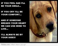 Dog Quotes Love Loyalty (4)