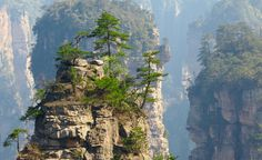 Rumor has it that this was the inspiration for the floating forests in Avatar's fictitious world of Pandora. (From: Photos: 10 Places That Are Out of this World, Zhangjiajie National Forest Park, China ) Places To Travel, Places To See, Travel Destinations, Lonely Planet, Beautiful World, Beautiful Places, Zhangjiajie, Pandora, Forest Park