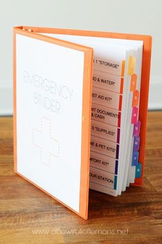 Family Emergency Binders ~ Pinteresting Thursdays ~ Mom with a Prep {blog}