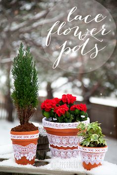 Whipperberry: DIY Lace Flower Pots